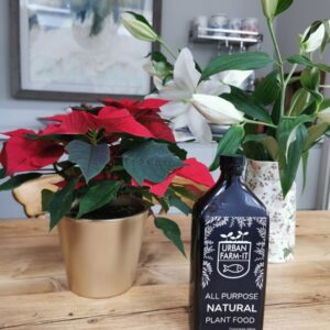 Natural plant food liquid next to flowers